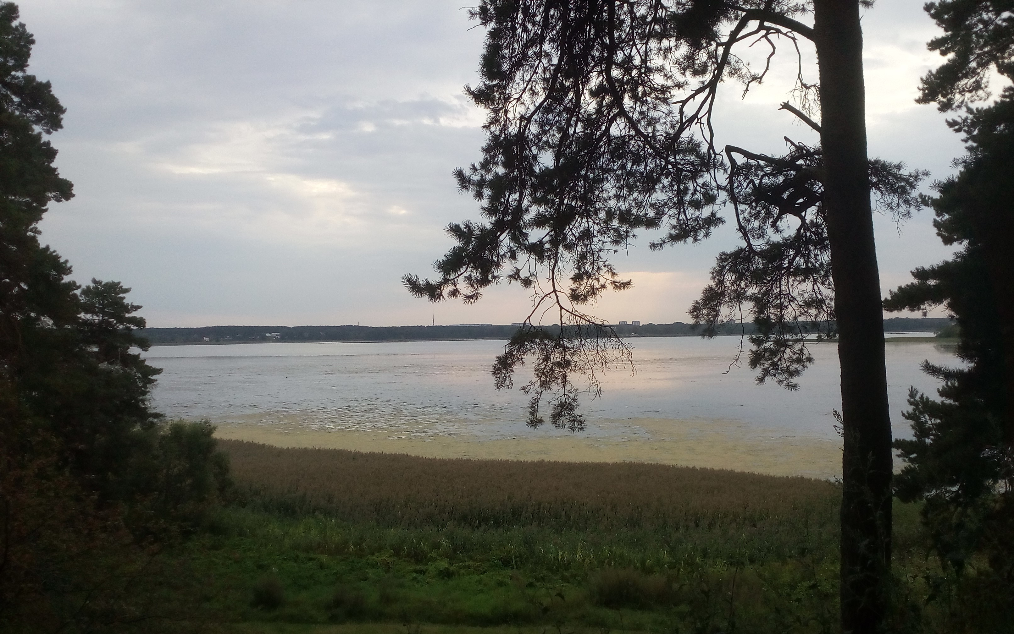 Skats uz Juglas ezeru