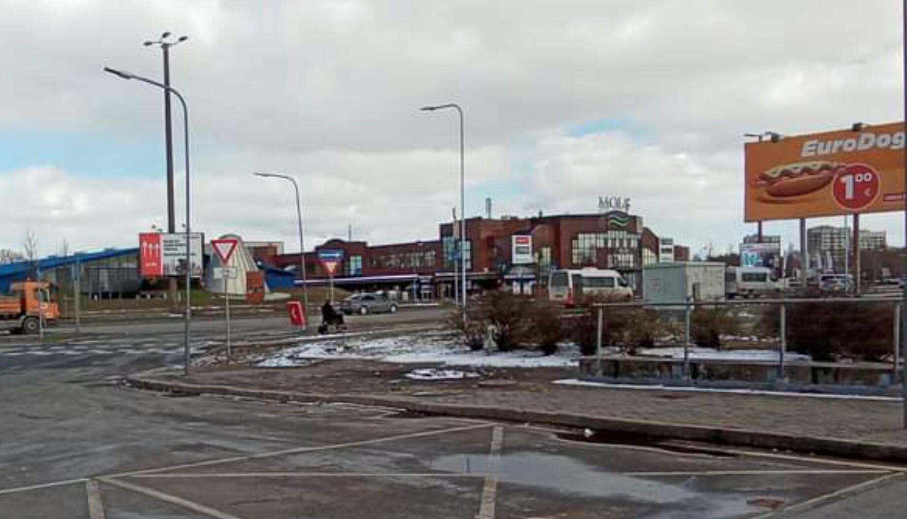 Lielveikals Mols
